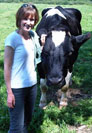 Dr. Teachout with a cow