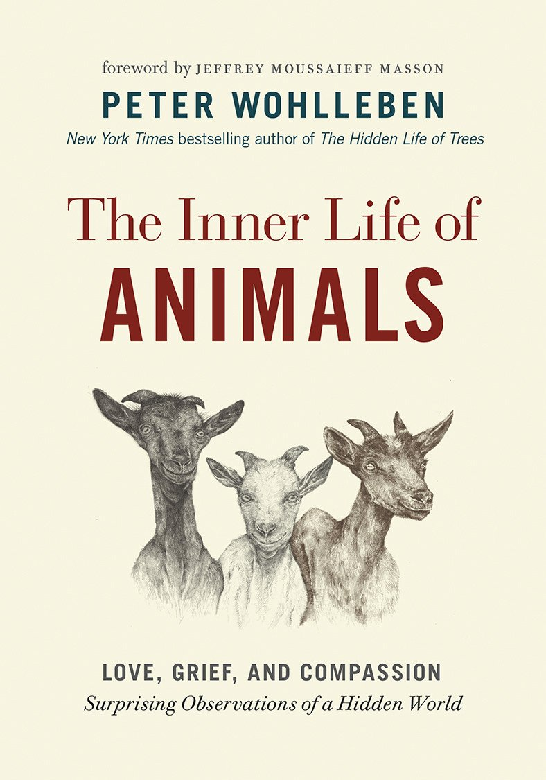 pets on the couch neurotic dogs compulsive cats anxious birds and the new science of animal psychiatry
