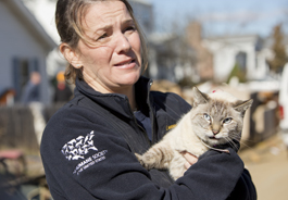 A Member of The HSUS' Animal Rescue Team holds a cat who was rescued in Union Beach, NJ after Hurricane Sandy