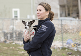 Member of The HSUS' Animal Rescue Team holds a dog rescued in the aftermath of Hurricane Sandy
