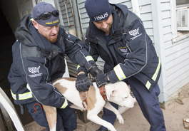 Members of The HSUS' Animal Rescue Team recover a dog who was left behind during Hurricane Sandy
