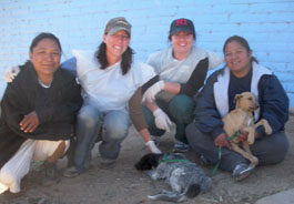 Sick puppy treated at San Carlos 2012 clinic
