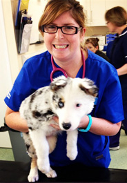 Veterinary student, Valerie Daru, with a dog at Dogs Trust