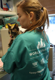 Tech holding cat during a World Spay Day 2012 event