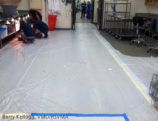 wsd14_uf_plastic_covering_floor.jpg