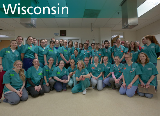 Volunteer team photo from the World Spay Day clinic in Wisconsin