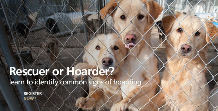 The Tipping Point: Spotting an Animal Hoarder