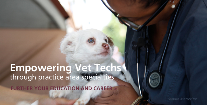Empowering Veterinary Technicians to Further their Education and Careers