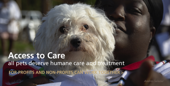 Guiding Principles to Ensure Access to Veterinary Care