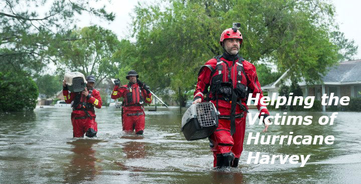 Helping the Victims of Hurricane Harvey